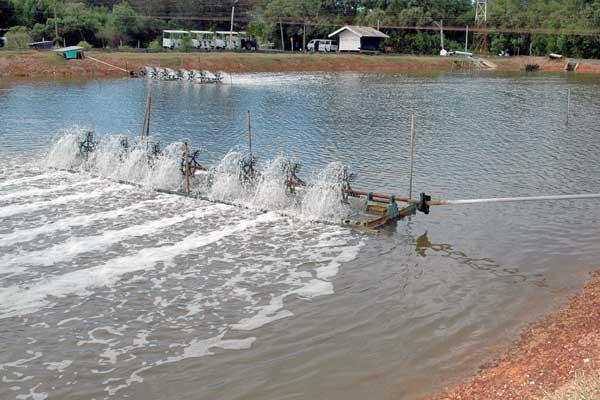 دستگاه هوادهی استخر پرورش ماهی